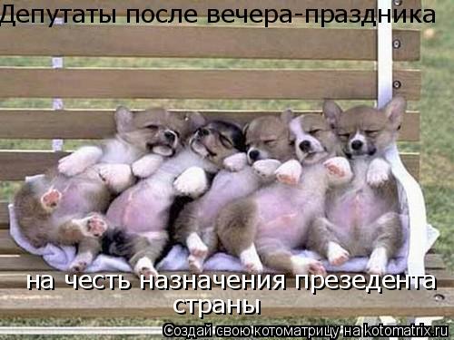 Котоматрица: Депутаты после вечера-праздника на честь назначения презедента страны