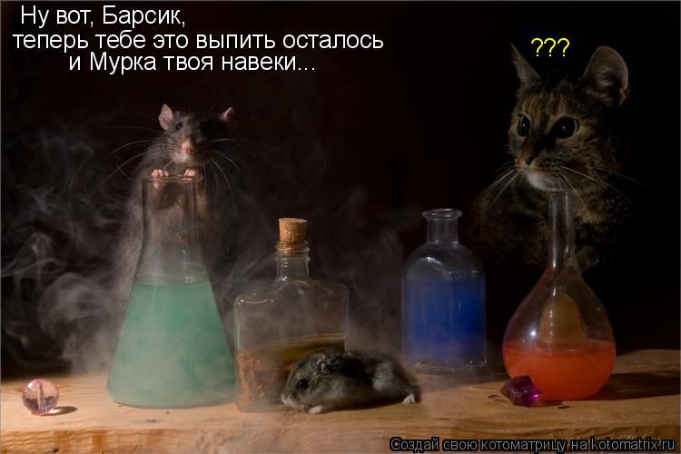 Котоматрица: Ну вот, Барсик,  теперь тебе это выпить осталось  и Мурка твоя навеки...  ???