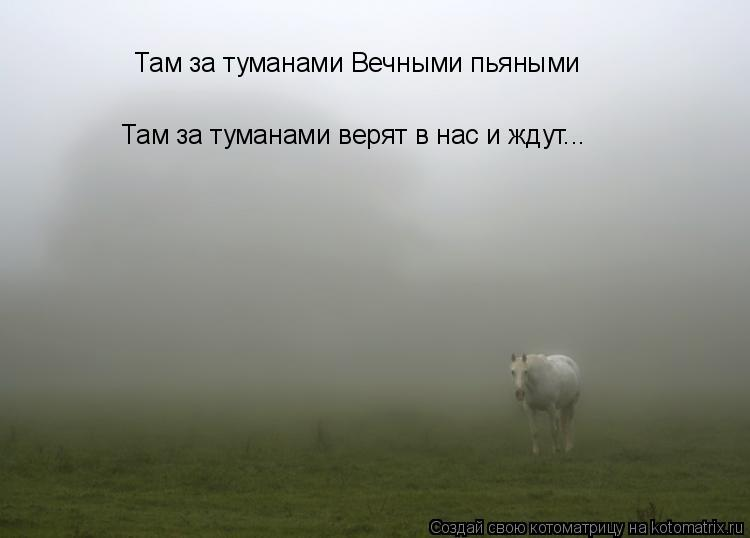 Котоматрица: Там за туманами Вечными пьяными Там за туманами верят в нас и ждут...
