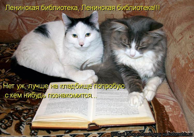 Котоматрица: Ленинская библиотека, Ленинская библиотека!!! Нет уж, лучше на кладбище попробую с кем нибудь познакомится...