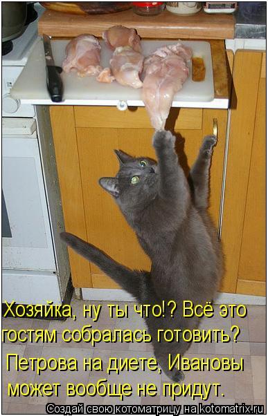 Котоматрица: Хозяйка, ну ты что!? Всё это гостям собралась готовить? Петрова на диете, Ивановы может вообще не придут.