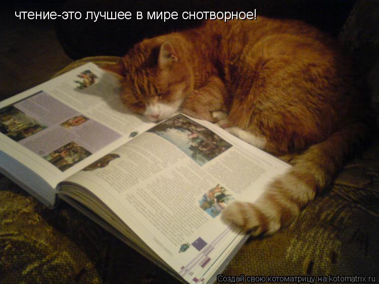 Котоматрица: чтение-это лучшее в мире снотворное!