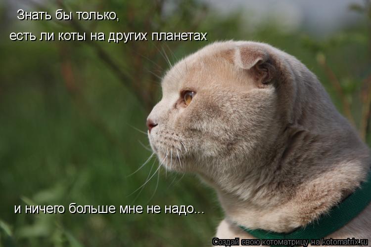 Котоматрица: Знать бы только, есть ли коты на других планетах  и ничего больше мне не надо...