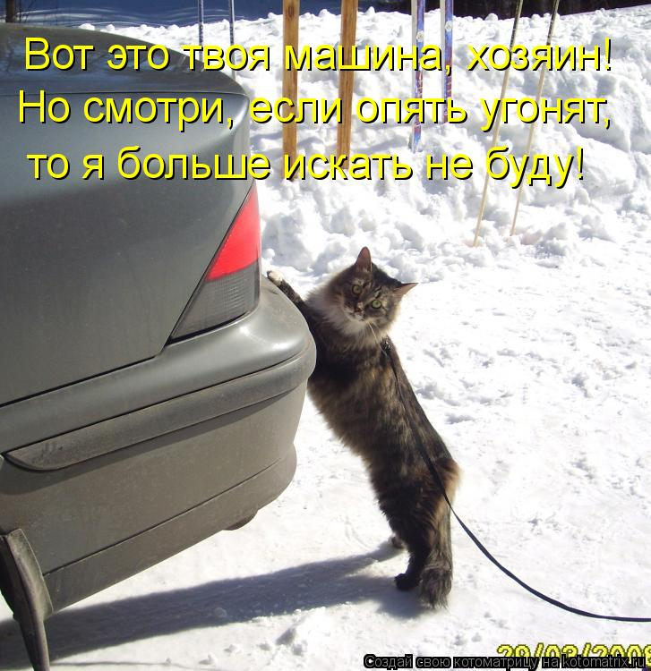 Котоматрица: Вот это твоя машина, хозяин! Но смотри, если опять угонят,  то я больше искать не буду!