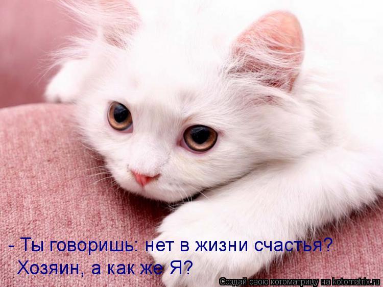 Котоматрица: - Ты говоришь: нет в жизни счастья? Хозяин, а как же Я?
