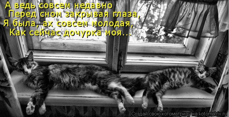 Котоматрица: А ведь совсем недавно  Перед сном закрывая глаза, Я была, ах совсем молодая, Как сейчас дочурка моя...