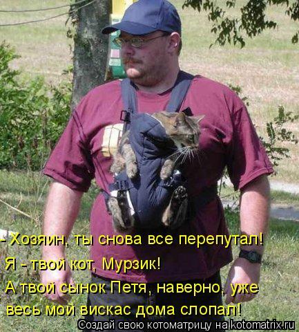 Котоматрица: - Хозяин, ты снова все перепутал! Я - твой кот, Мурзик! А твой сынок Петя, наверно, уже весь мой вискас дома слопал!