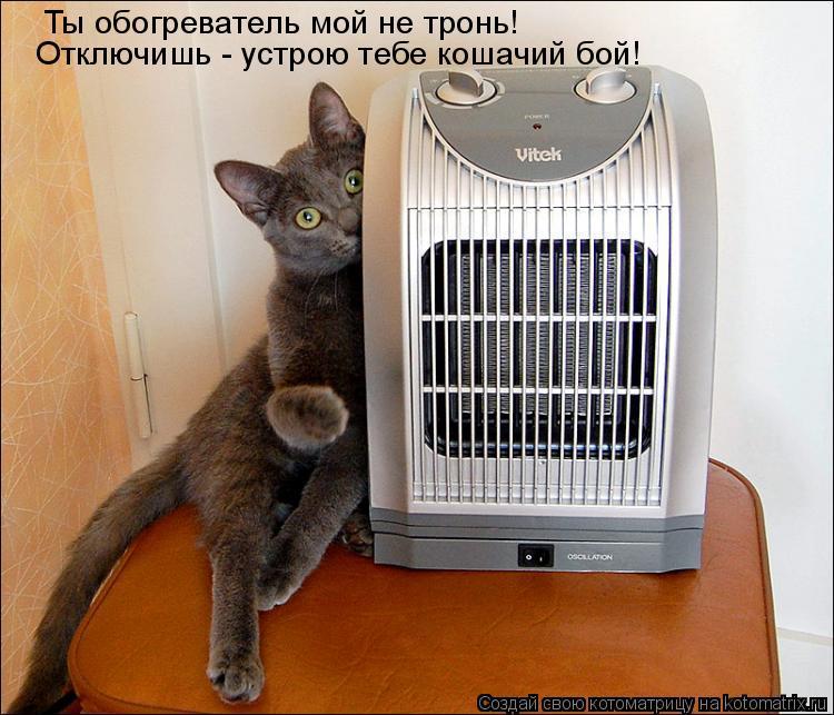 Котоматрица: Ты обогреватель мой не тронь!  Отключишь - устрою тебе кошачий бой!