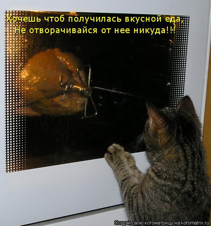 Котоматрица: Хочешь чтоб получилась вкусной еда, Не отворачивайся от нее никуда!!!