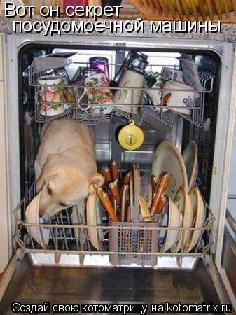 Котоматрица: Вот он секрет посудомоечной машины
