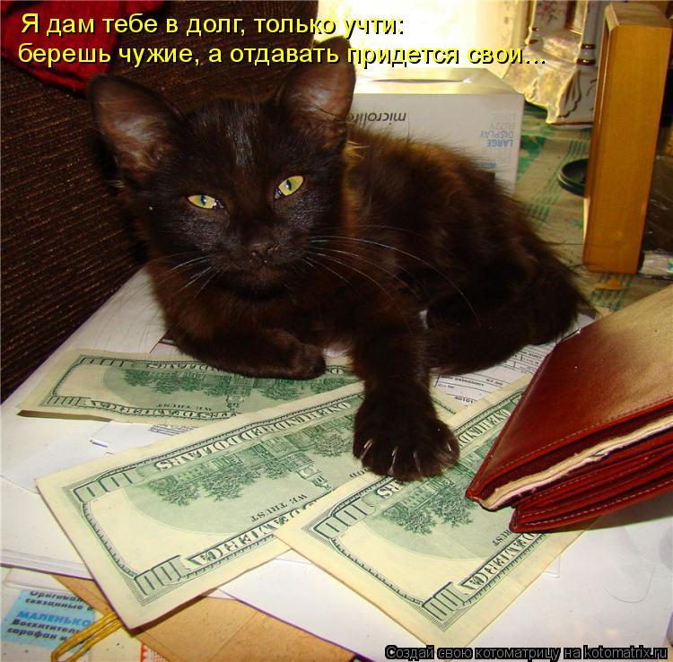 Котоматрица: Я дам тебе в долг, только учти:  берешь чужие, а отдавать придется свои...
