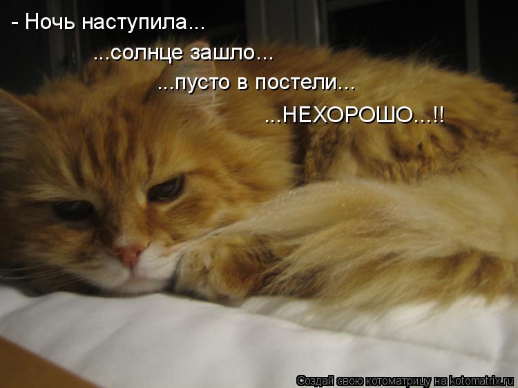 Котоматрица: - Ночь наступила... ...солнце зашло... ...пусто в постели... ...НЕХОРОШО...!!