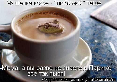 """Котоматрица: -Мама, а вы разве не знаете,в Париже  все так пьют! Чашечка кофе - """"любимой"""" тёще."""