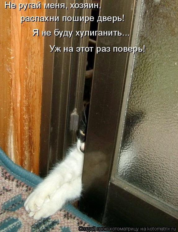 Котоматрица: Не ругай меня, хозяин, распахни пошире дверь! Я не буду хулиганить... Уж на этот раз поверь!