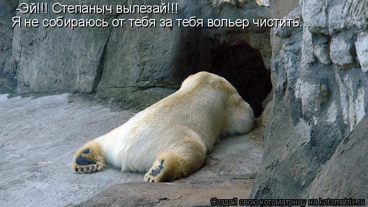 Котоматрица: -Эй!!! Степаныч вылезай!!!  Я не собираюсь от тебя за тебя вольер чистить...