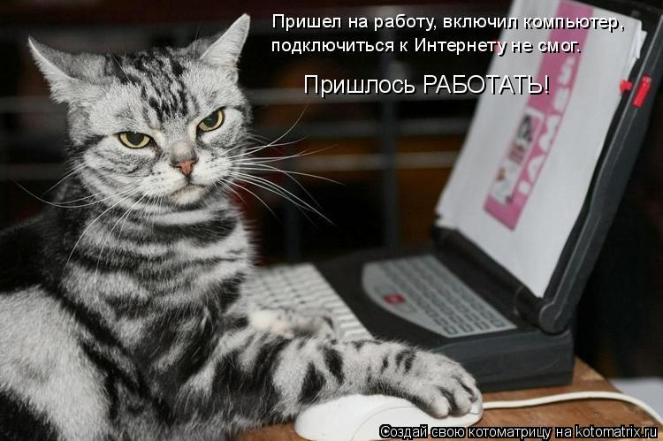 Котоматрица: Пришел на работу, включил компьютер, подключиться к Интернету не смог. Пришлось РАБОТАТЬ!