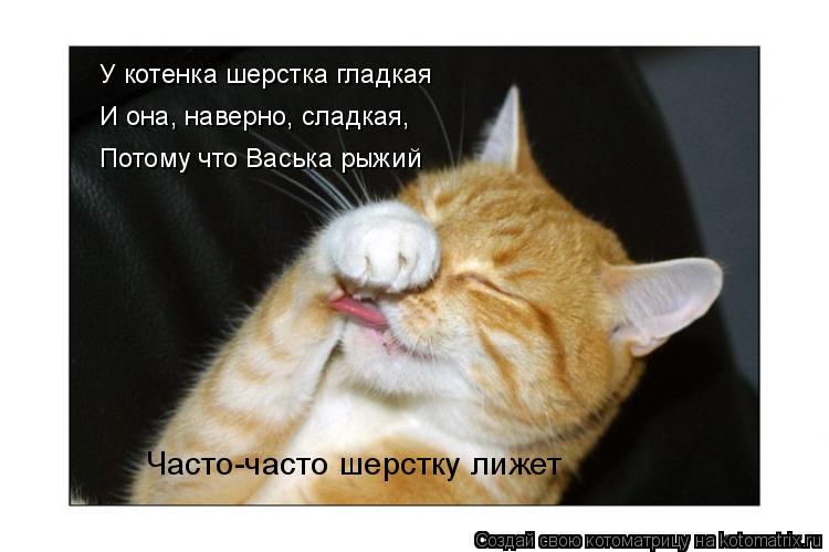 Котоматрица: У котенка шерстка гладкая И она, наверно, сладкая, Потому что Васька рыжий Часто-часто шерстку лижет