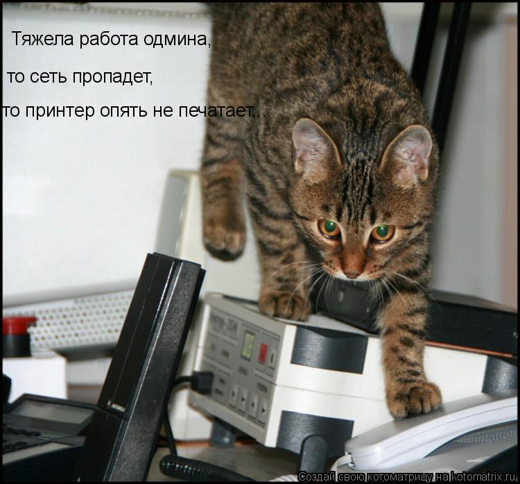 Котоматрица: Тяжела работа одмина, то сеть пропадет, то принтер опять не печатает....