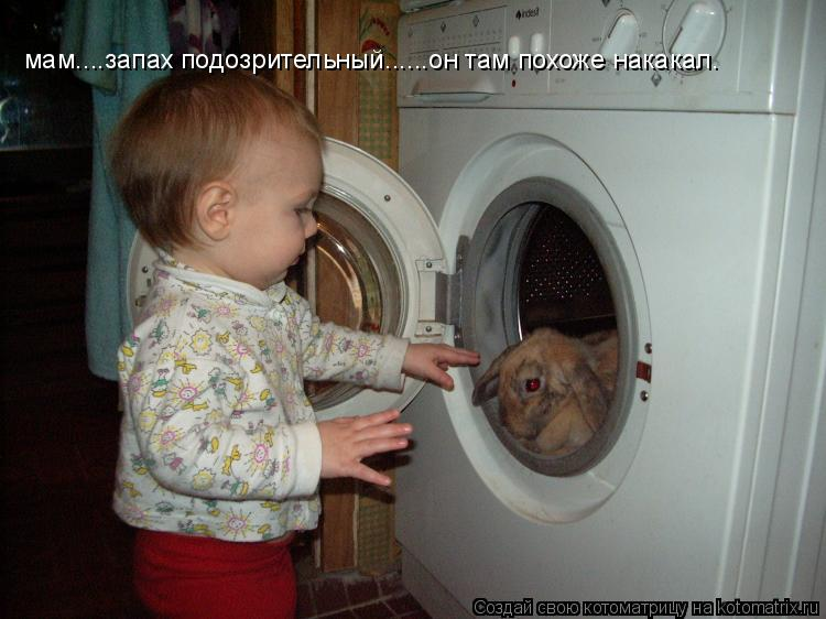 Котоматрица: мам....запах подозрительный......он там похоже накакал.