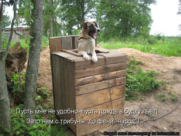 """Котоматрица: Пусть мне не удобно, пусть дождь в будку льёт! Зато нам с трибуны, до фени """"народ""""!"""