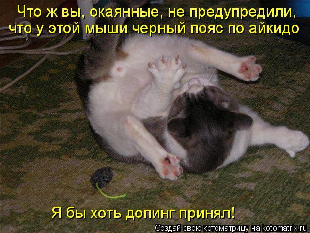Котоматрица: Что ж вы, окаянные, не предупредили, что у этой мыши черный пояс по айкидо Я бы хоть допинг принял!