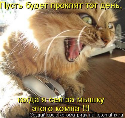 Котоматрица: Пусть будет проклят тот день, когда я сел за мышку  этого компа !!!