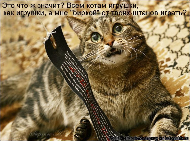 """Котоматрица: Это что ж значит? Всем котам игрушки,  как игрушки, а мне """"биркой"""" от твоих штанов играть?"""