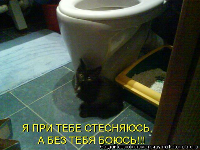 Котоматрица: Я ПРИ ТЕБЕ СТЕСНЯЮСЬ, А БЕЗ ТЕБЯ БОЮСЬ!!!