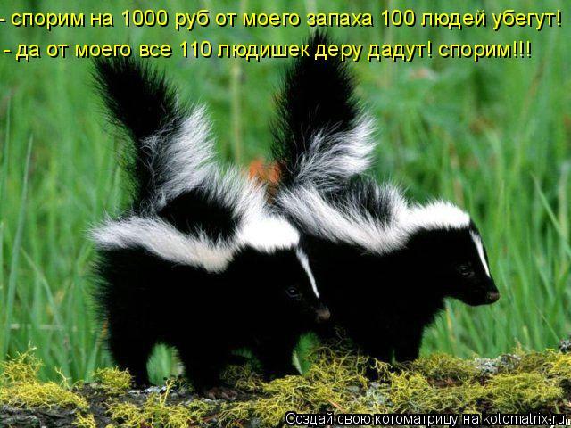 Котоматрица: - спорим на 1000 руб от моего запаха 100 людей убегут! - да от моего все 110 людишек деру дадут! спорим!!!
