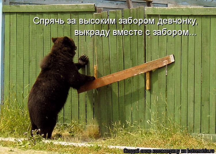 Котоматрица: Спрячь за высоким забором девчонку, выкраду вместе с забором...