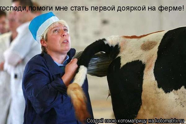 Котоматрица: господи,помоги мне стать первой дояркой на ферме!