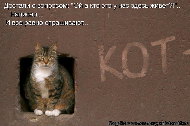 """Котоматрица: Достали с вопросом: """"Ой а кто это у нас здесь живет?!""""...  Написал...  И все равно спрашивают..."""