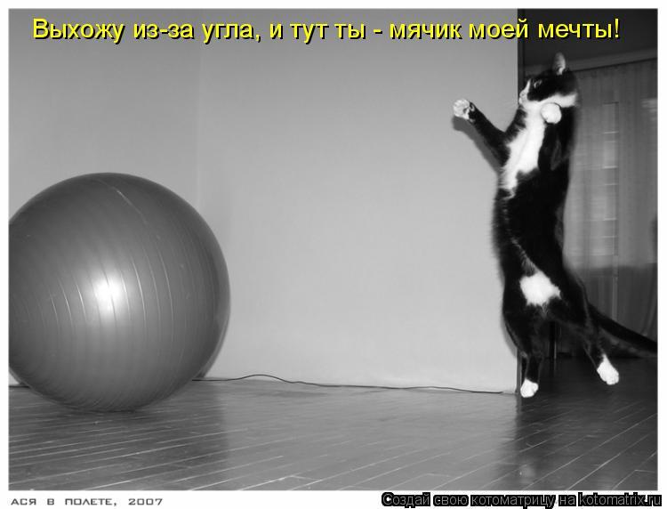 Котоматрица: Выхожу из-за угла, и тут ты - мячик моей мечты!