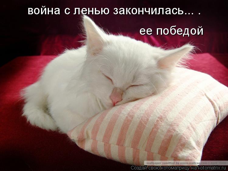 http://kotomatrix.ru/images/lolz/2008/10/16/10.jpg