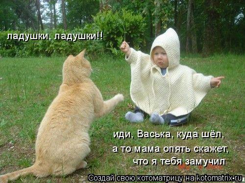 Котоматрица: ладушки, ладушки!! а то мама опять скажет,  что я тебя замучил иди, Васька, куда шёл,