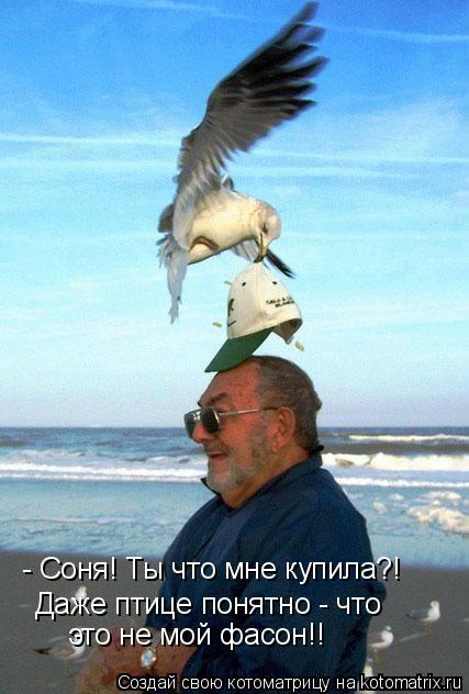 Котоматрица: - Соня! Ты что мне купила?! Даже птице понятно - что это не мой фасон!!