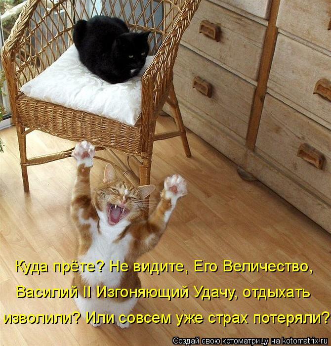 Котоматрица: Куда прёте? Не видите, Его Величество,  Василий II Изгоняющий Удачу, отдыхать  изволили? Или совсем уже страх потеряли?