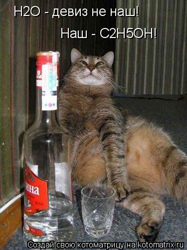 Котоматрица: Наш - C2H5OH! H2O - девиз не наш!