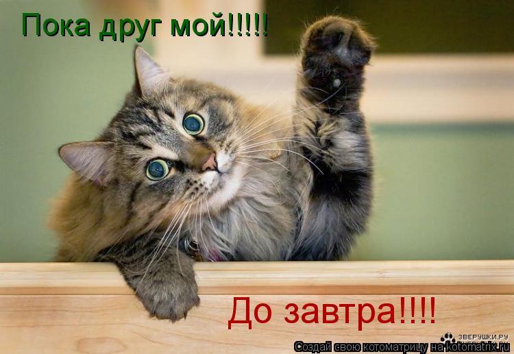 http://kotomatrix.ru/images/lolz/2008/10/18/-U.jpg