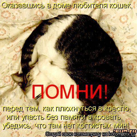 Котоматрица: Оказавшись в доме любителя кошек, перед тем, как плюхнуться в кресло, или упасть без памяти в кровать, убедись, что там нет когтистых мин! ПОМ