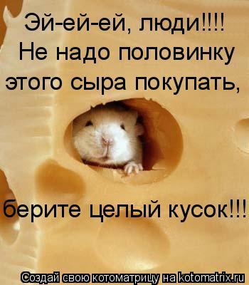 Котоматрица: Эй-ей-ей, люди!!!!  Не надо половинку  этого сыра покупать,  берите целый кусок!!!