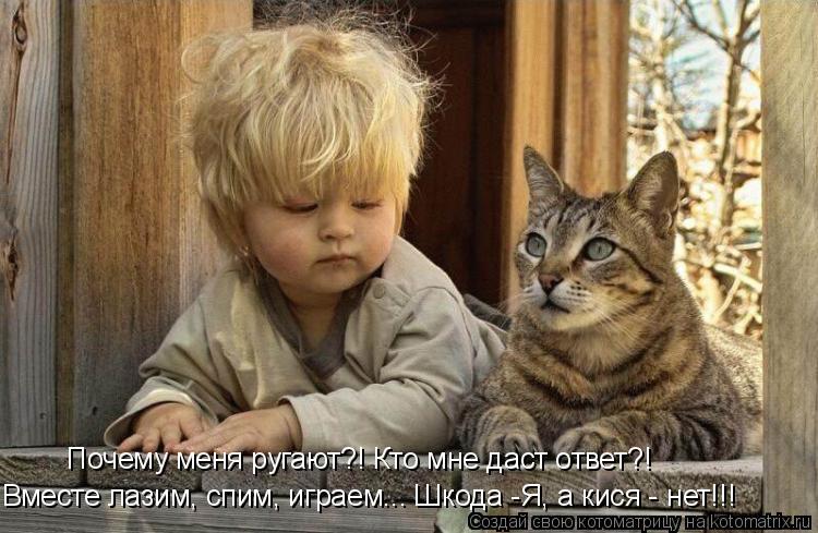 Котоматрица: Вместе лазим, спим, играем... Шкода -Я, а кися - нет!!! Почему меня ругают?! Кто мне даст ответ?!