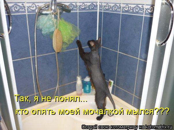 Котоматрица: Так, я не понял... кто опять моей мочалкой мылся???