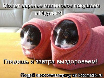 Котоматрица: Может варенье малиновое покушаем, а Мурзик?! Глядишь и завтра выздоровеем!