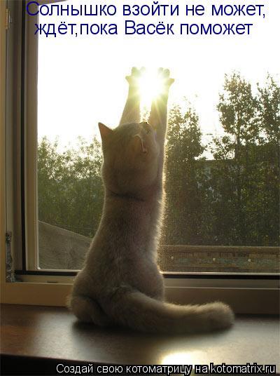 Котоматрица: Солнышко взойти не может, ждёт,пока Васёк поможет