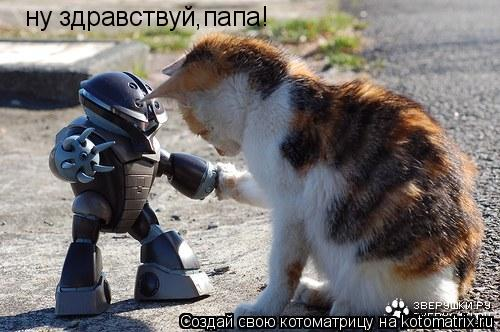 Котоматрица: ну здравствуй,папа!