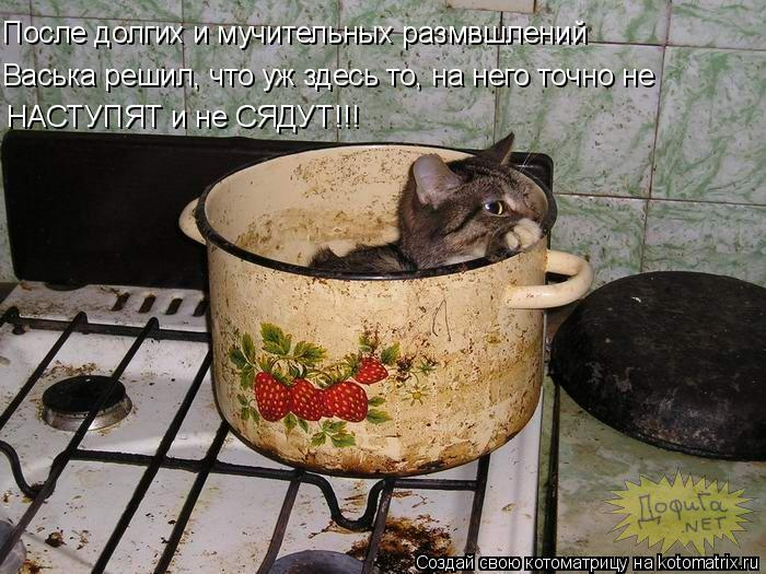 Котоматрица: После долгих и мучительных размвшлений Васька решил, что уж здесь то, на него точно не  НАСТУПЯТ и не СЯДУТ!!!
