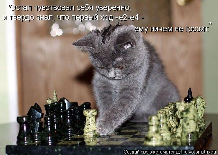 """Котоматрица: """"Остап чувствовал себя уверенно, ему ничем не грозит. и твердо знал, что первый ход -  е2-е4 -  """""""