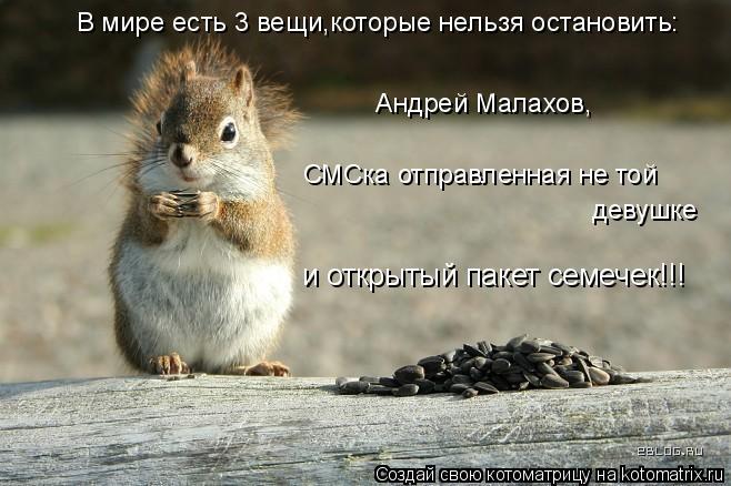 Котоматрица: В мире есть 3 вещи,которые нельзя остановить: Андрей Малахов,  СМСка отправленная не той  девушке и открытый пакет семечек!!!