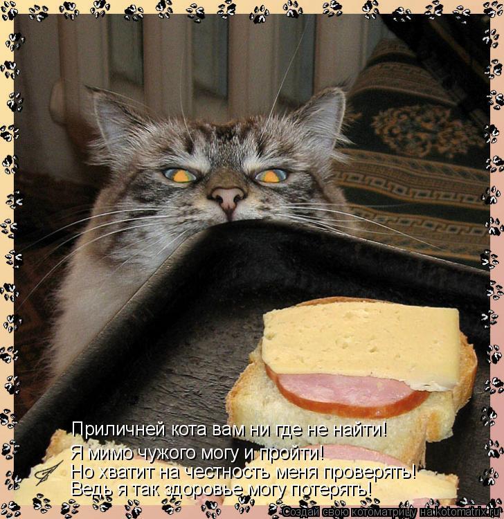 Котоматрица: Приличней кота вам ни где не найти! Я мимо чужого могу и пройти! Но хватит на честность меня проверять! Ведь я так здоровье могу потерять!